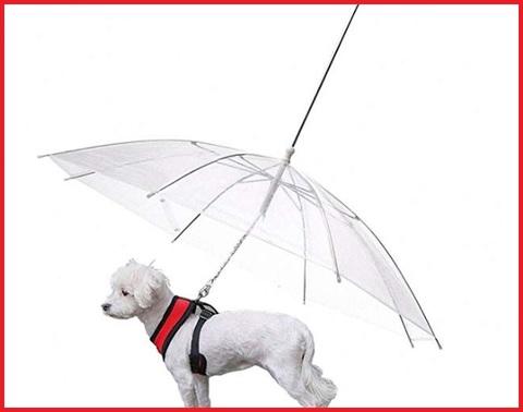 Ombrello per cani a guinzaglio