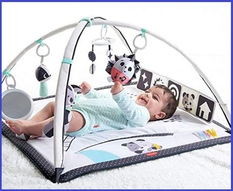Palestrina neonato multifunzione