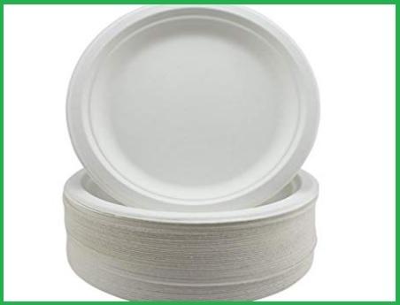 Piatti carta biodegradabili
