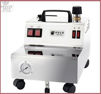 Generatore di vapore professionale