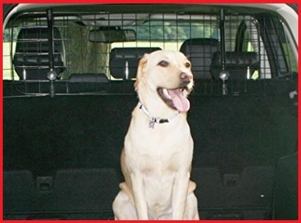 Rete bagagliaio auto per cani