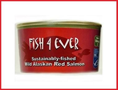 Salmone selvaggio alaska