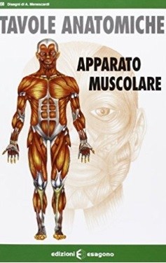 Tavole anatomiche del corpo umano e i suoi muscoli