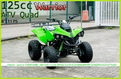 Quad 125cc A Motore 4 Tempi Aria Metallizzato