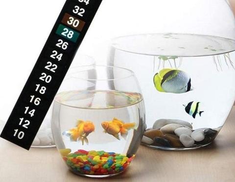 Termometro acquario adesivo