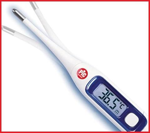 Termometro digitale pic bambini
