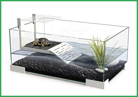 Vasca tartarughe vetro