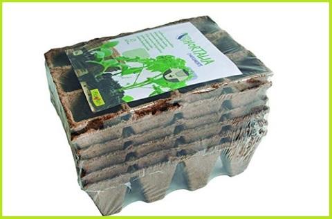 Vaso biodegradabile 12 cavità