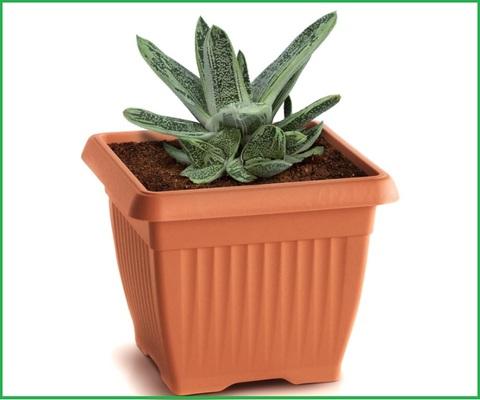 Vasi quadrati plastica per piante