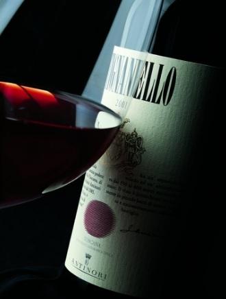 Vino rosso tignanello bottiglia da 750 ml