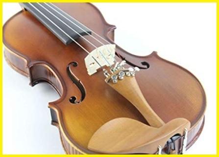 Violini bambini principianti