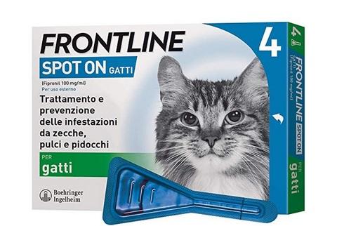 Frontline per gatti