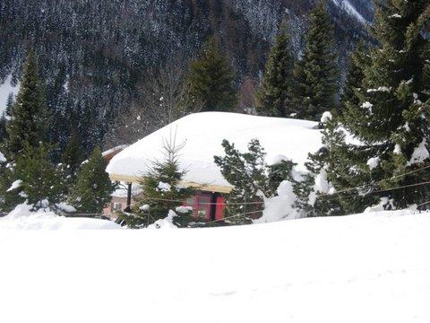 Affitto Chalet In Legno In Svizzera